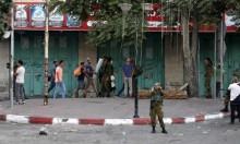 المستوطنون في الخليل تحت حماية الاحتلال