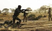 مقتل 11 مسلحا وجندي بكمين في مالي