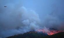اليونان: استقالة وزير الحماية المدنية بعد كارثة الحرائق
