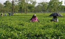 الهند: إضراب 400 ألف مزارع من أجل زيادة بنصف دولار