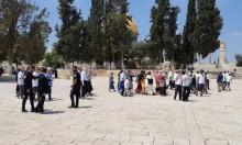 عشرات المستوطنين يقتحمون الأقصى واعتقالات للمقدسيين عند أبوابه