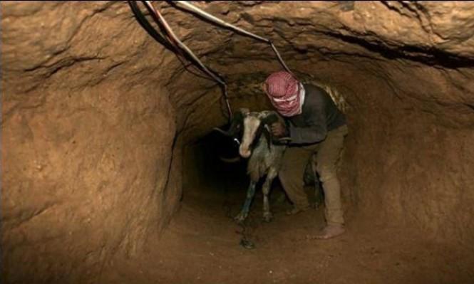 رفح: مقتل فلسطيني داخل نفق قرب الحدود المصرية