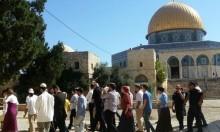 مستوطنون يقتحمون الأقصى والاحتلال يحجبه عن النساء الفلسطينيات