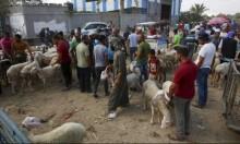 تحليلات: إسرائيل تريد هدوءا في غزة بالأساس