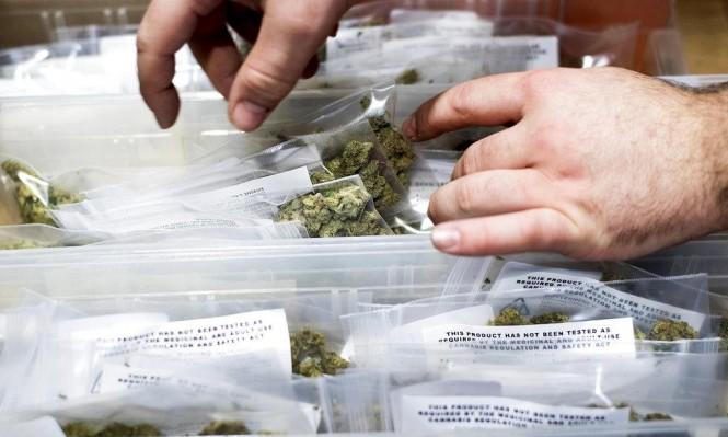 الكنديون ينفقون 4.4 مليار دولار على الماريحوانا