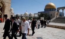 مستوطنون يقتحمون الأقصى وقيود مشددة على الفلسطينيين