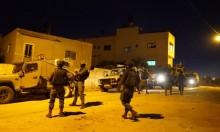 المستوطنون يعربدون بالضفة والاحتلال يعتقل 8 فلسطينيين