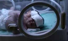 غزة: 5024 مولودا جديدا خلال آب