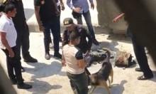 حادثان في السفارتين الأميركيتين في القاهرة وطرابلس