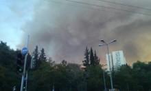 حيفا: اندلاع حريق بالسفوح الغربية لجبل الكرمل