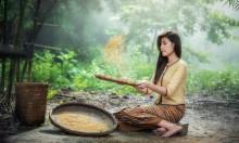 أستاذ صيني  يطلب عدّ مائة مليون حبة أرز