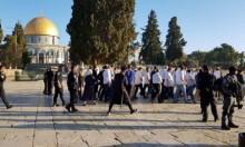 مئات المستوطنين يقتحمون الحرم المقدسي