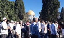 مئات المستوطنين يقتحمون الأقصى والاحتلال يحجبه عن الفلسطينيين