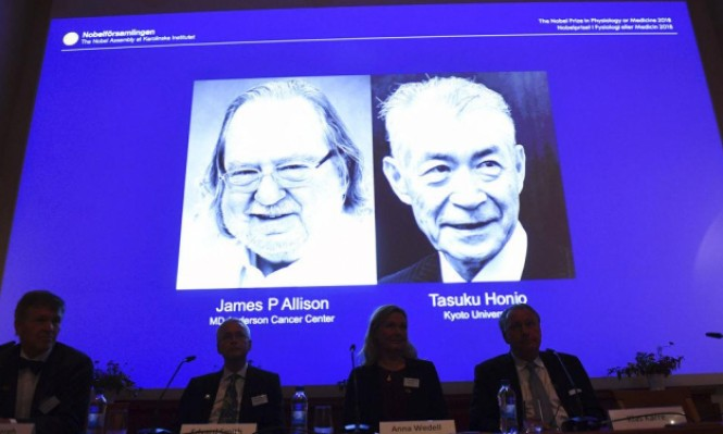 نوبل للطب بالمناصفة لأميركي وياباني طورا علاجا للسرطان
