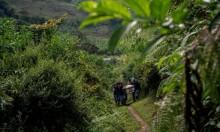 كولومبيا: ظاهرة اغتيال النشطاء لا تكترث لانتهاء الحرب الأهلية
