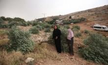 الاحتلال يجرف عشرات الدونمات ويقتلع مئات الأشجار بالضفة