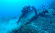 العثور على أقدم حطام سفينة في العالم بالبحر الأسود