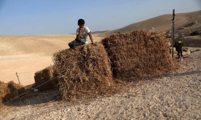 """الحنيطي: اقتلاع التجمعات البدوية ضمن """"تنظيف"""" مناطق""""ج"""" من الفلسطينيين"""