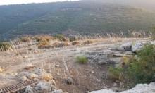 حالة الطقس: جاف وحار باستثناء المناطق الجبلية وشمالي البلاد