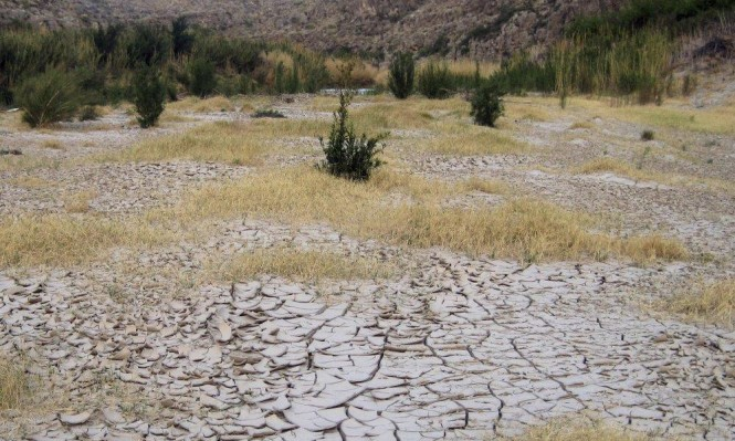 """ارتفاع احتمال حدوث ظاهرة """"إل نينيو"""" هذا الشتاء إلى 80%"""