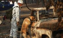 أميركا: البحث عن مفقودي حريق كاليفورنيا