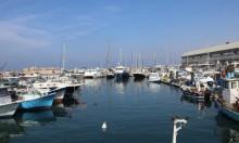 جانب من ميناء يافا