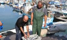 ميناء يافا وصيادو الأسماك العرب: معركة على الهوية