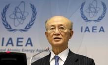 واشنطن تتعهد لإسرائيل بالضغط على وكالة الطاقة الذرية بشأن إيران