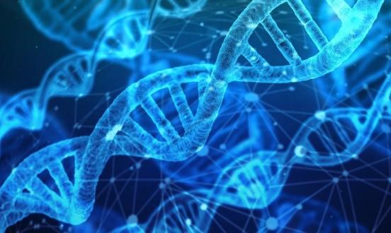 علماء يعارضون تجربة في التعديل الجيني على البشر