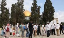 القدس: المستوطنون يقتحمون الأقصى
