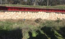 العثور على جثة في وادي اسكندر قرب باقة الغربية