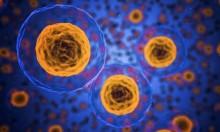 اكتشاف علمي سيساهم بابتكار علاج  للسرطان لا يحتاج الكيميائي