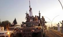 العفو الدولية: داعش دمر الزراعة شمالي العراق
