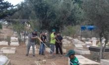 يافا: معسكر عمل لصيانة مقبرة طاسو السبت