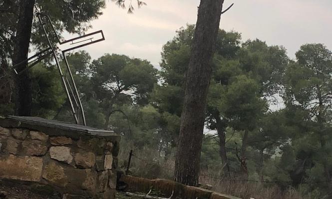 إرهابي يهودي يعتدي على كنيسة معلول