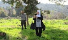 حكاية مهجرة في ألمانيا: قلبها في دمشق وحنينها لصفورية