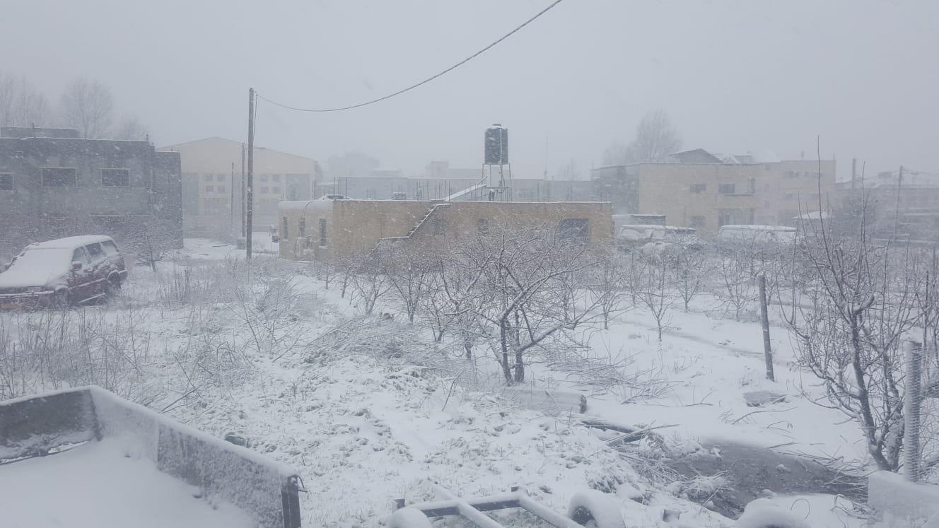 فيديو وصور: استمرار تساقط الثلوج في جبل الشيخ