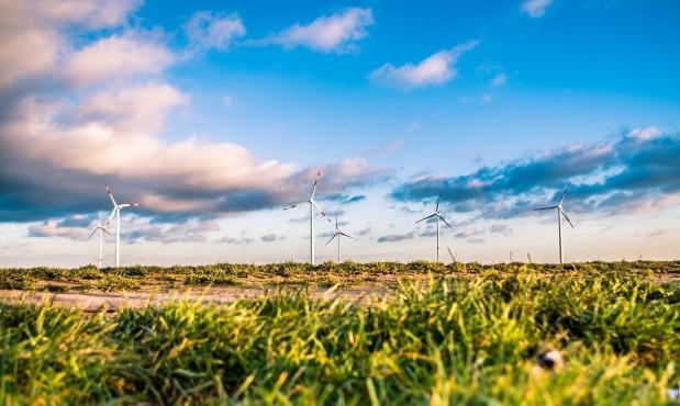 تونس تبدأ إنتاج الكهرباء بطاقة الرياح
