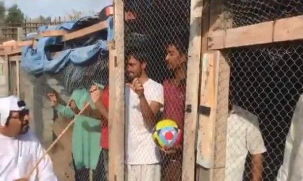 #نبض_الشبكة: إماراتي يحتجز هنودًا بقفص للدجاج لتشجيع المنتخب