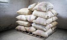إيطاليا: ضبط 644 كيلوغراما من الكواكيين بأكياس قهوة!