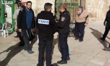 مستوطنون يقتحمون الأقصى والاحتلال يواصل غلق المؤسسات الفلسطينية