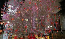 انتهاء عام الكلب وبدء عام الخنزير.. رأس السنة الصينيّ