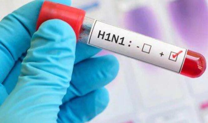 المغرب: 9 وفيّات خلال أسبوع بسبب إنفلونزا الخنازير
