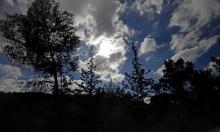 حالة الطقس: أجواء باردة مصحوبة برياح شرقية ومغبرة