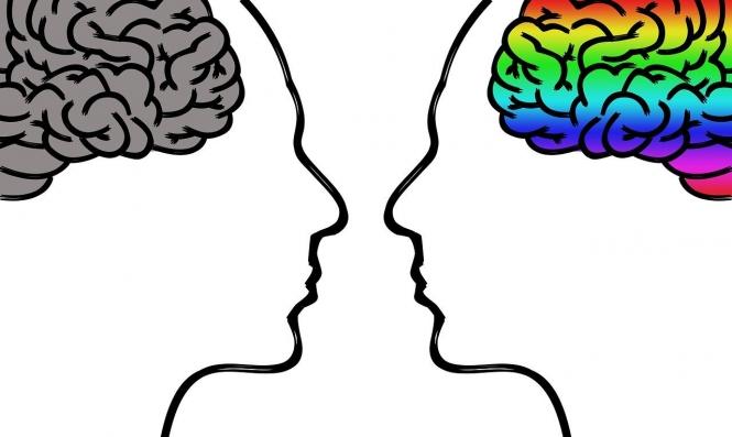 دماغ المرأة أكثر حدّة وقوّةً وشبابًا من دماغ الرجل