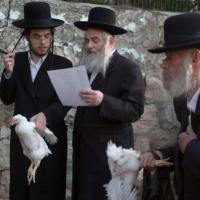 القدس المحتلة: مشاريع استيطانية بتكلفة 200 مليون شيكل