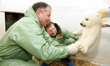 ولادة ديسم (صغير الدّب) قطبي في ألمانيا