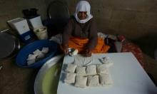 مُسنة فلسطينية من جنين تصنع الجبن