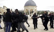 مستوطنون يقتحمون الأقصى وإبعاد للمقدسيين عن المسجد