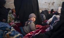 سورية: مقتل 21 عنصرا من قوات النظام والموالين لها